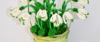 Abstract snowdrops flower in a basket - Spring gift