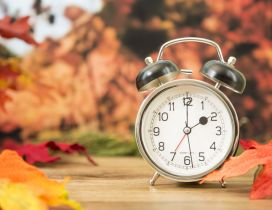 Two o'clock in a wonderful autumn day