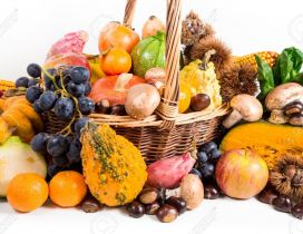 Fruits and vegetables - Golden season the Autumn