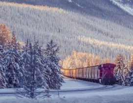 Frozen freight train through forest - Winter wallpaper
