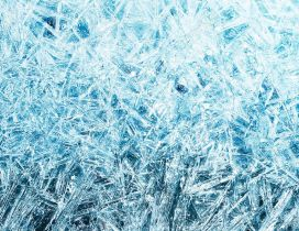 Frozen window - Wonderful ice particles