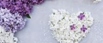 Wonderful white heart made from flowers-Lilac Spring perfume