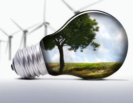 Nature in a light bulb - Explore nature safety